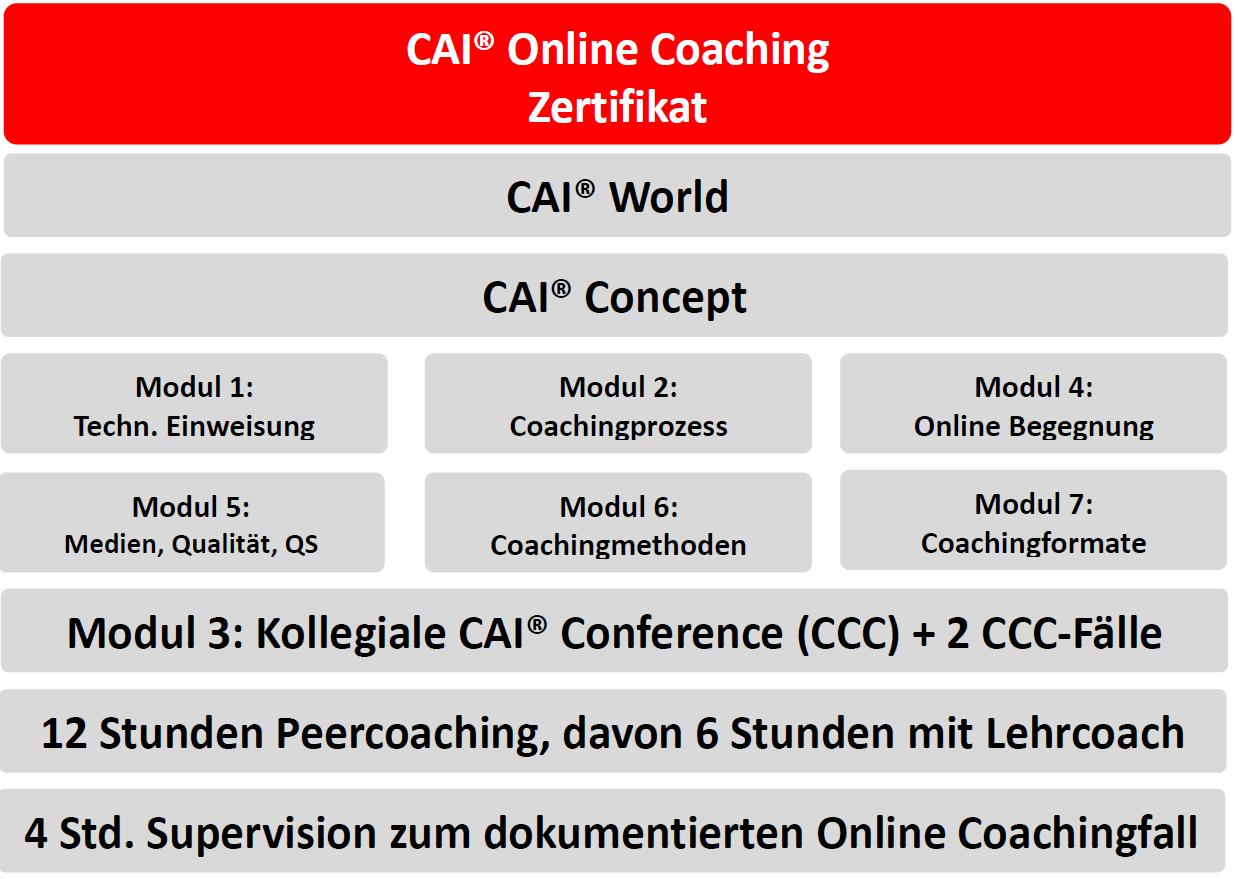 Modulübersicht Online-Coaching